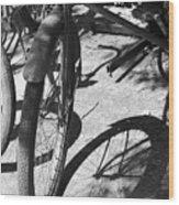 Elgin Bicycle Shadow Wood Print
