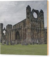 Elgin Cathedral - East View Wood Print