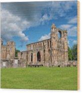 Elgin Cathedral, Scotland Wood Print