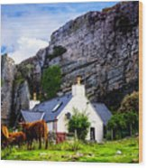 Elgol Cottage, Skye Wood Print