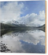 Elizabeth Lake Detail 2 - Glacier National Park Wood Print