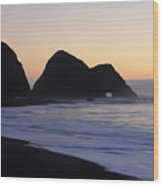 Elk Beach California Wood Print by Bob Christopher