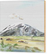 Elk Mountain Wyoming Wood Print