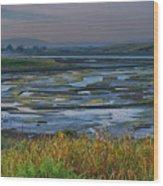 Elkhorn Slough Wood Print