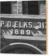 Elks Building 1889 Wood Print