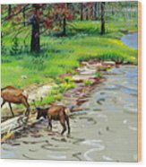 Elks Crossing Wood Print