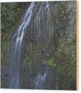 Elkview Falls Wood Print