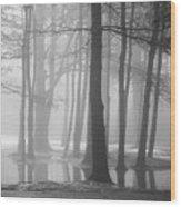Ellacoya Fog - January Thaw Wood Print