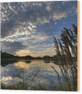 Ellenton Lake Sunset 05 Wood Print