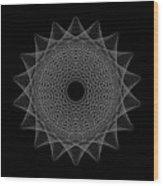 Elliptical Mesh IIik Wood Print by Robert Krawczyk