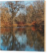 Elm By The Connecticut River In Autumn Wood Print
