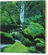 Elowah Falls 4 Columbia River Gorge National Scenic Area Oregon Wood Print