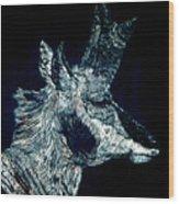 Elusive Visions Antelope Buck Wood Print