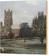 Ely Cambridgeshire, Uk.  Ely Cathedral  Wood Print