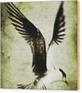 Emancipate Wood Print