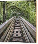 Embrace Your Destiny Wood Print