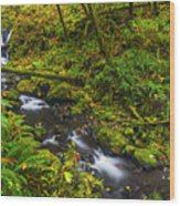 Emerald Falls And Creek In Autumn  Wood Print
