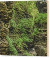 Emerald Gorge Wood Print