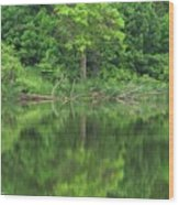 Emerald Green Reflections Wood Print