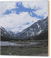 Emerald Lake Area Wood Print