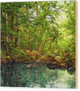 Emerald Lake Wood Print