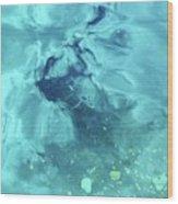 Water Horse Wood Print