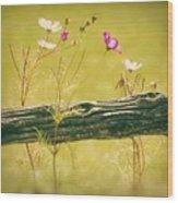 Emerging Beauties - Y11a Wood Print