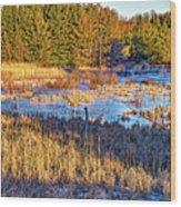 Emerging Marsh Wood Print