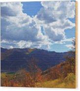 Emigration Canyon Wood Print