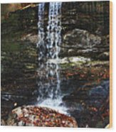 Emory Gap Falls Wood Print