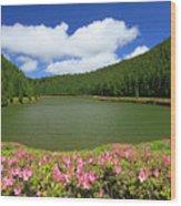 Empadadas Lakes Wood Print