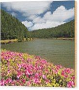 Empadadas Lakes II Wood Print