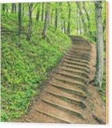 Empire Bluffs Trail Steps In Michigan Wood Print