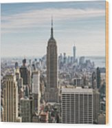 Empire State Building And Manhattan Skyline, New York City, Usa Wood Print