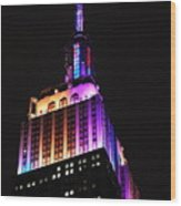 Empire State Building In Pastel Color Wood Print