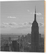 Empire State Building Panorama Wood Print