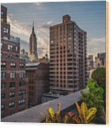Empire State Building Sunset Rooftop Garden Wood Print