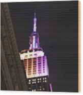 Empire State Building With A Light In A Window Wood Print