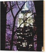 Empire State From Madison Park 1 Wood Print