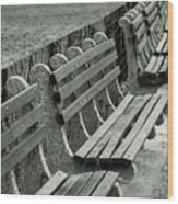 Empty Benches Wood Print