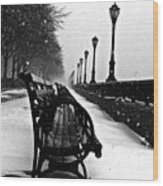 Empty Benches In The Snow Wood Print