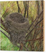 Empty Nest In Autumn Wood Print