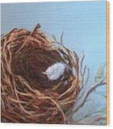 Empty Nest Wood Print