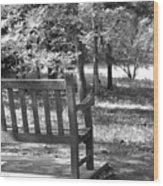 Empty Park Bench Wood Print