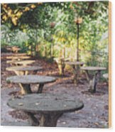 Empty Picnic Tables In The Early Fall With Fallen Leaves Wood Print
