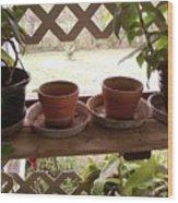 Empty Pots Wood Print