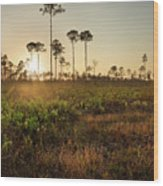 Empty Skies Over Picayune Strand Wood Print