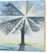 enchanced Tree Light Wood Print
