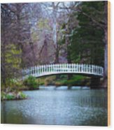 Enchanted Bridge Wood Print
