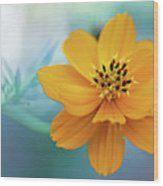Enchanted Flower Wood Print